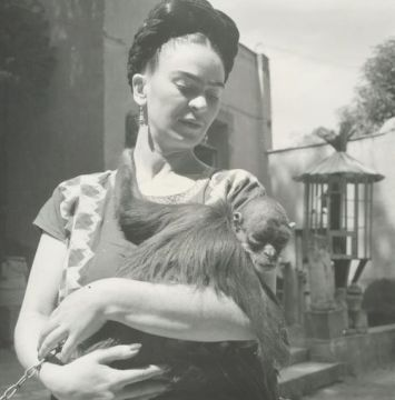 """Frida Kahlo and her beloved monkey Caimito de Guayabal pose for a photograph together for famed photographer Fritz Henle in 1943. The Mexican artist frequently featured her pet monkey, which in Mexican mythology is a symbol of lust, in her paintings, including her iconic piece """"Self-Portrait with Thorn Necklace and Hummingbird."""" From New York Daily News."""